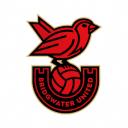 Bridgewater United FC Logo